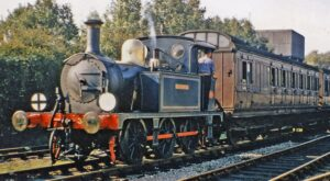 Locomotive with word 'Bluebell' on side. Brown passenger carriages.