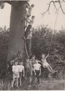 Group of nine boys. 5 standing in front of a large tree, three climbing up it and one on a rope swing.