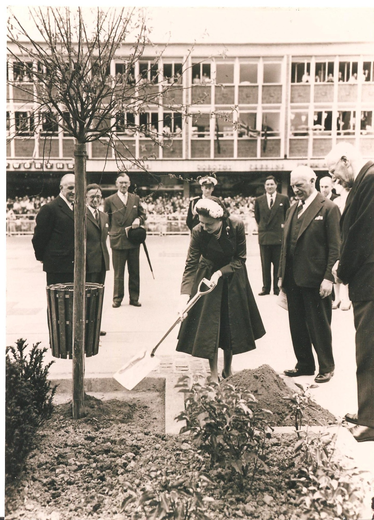 Queen planting tree, Queen's Square, 1958